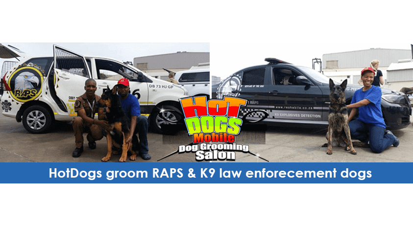 HotDogs-groom-RAPS-K9-law-enforecement-dogs.