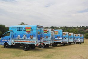 HotDogs fleet